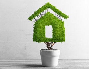 Green Loan